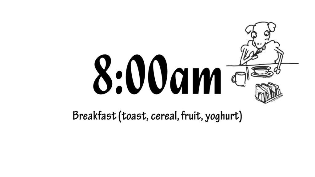 8.00am